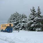 Albion,snow
