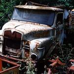 man,diesel19230